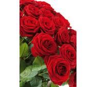 "Пакет для подарунка великий вертикальний ""Букет чайних троянд"" 25х37 см   (6 шт/уп)"
