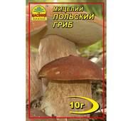 Мицелий гриба Польский, 10 гр