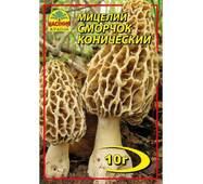 Мицелий гриба Сморчок конический, 10 гр