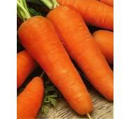 Морква смаковниця за 10 г (ЕМР-70)