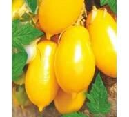 Семена томатов Сосулечка желтая