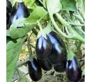 Семена баклажана Херсонский