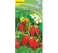 Семена земляники Александрия 100 шт.