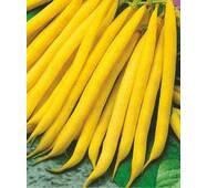 Семена фасоли спаржевой Сонеста