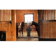 Технологические секции группового удерживания коней