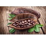 Олія какао натуральне