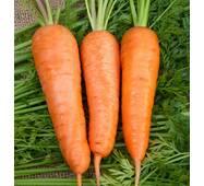 Морква Бабусині смаколики за 20 г  (ЕМР-72)
