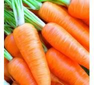 Морква Самий сік за 20 г (ЕМР-71)
