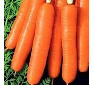 Морква Медовий поцілунок за 20 г  (ЕМР-77)