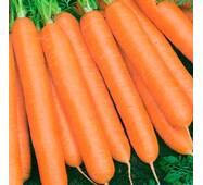 Морква Вовка-морковка за 20 г (ЕМР-75)