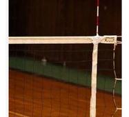 Антени волейбольні