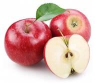 СФГ Перлина Поділля: продаж яблук оптом, купити яблука в Україні