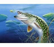 """Рыбная компания """"Рыбный мир"""""""