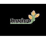 Инвико