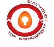 Top Management Consulting