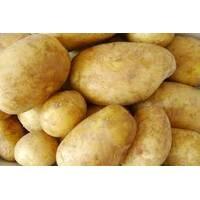 Картопля Щедрик за 4 кг (ІКР-102-П4)