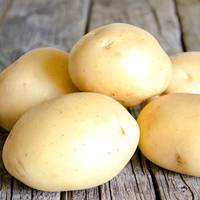 Картопля Сенсейшн за 8 кг (ІКР-167-П8)