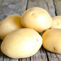 Картопля Сенсейшн за 4 кг (ІКР-167-П4)