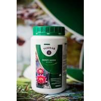 БиФ сезон (биол.средство для устранения избыт.количества орг.веществ и ограничения роста водорослей, в т.ч. и сине-зеленых водорослей)