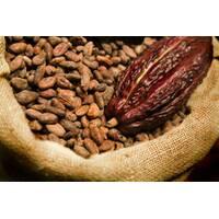 Какао масло рафинированное купить недорого