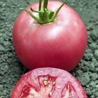 Семена томата Пинк Уникум F1