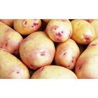 Картопля Пікассо