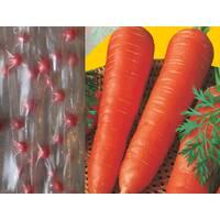 насіння на стрічці Морква Каротіна (ЕМР-37) за 5 м/уп
