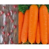 семена на ленте Морковь Тинга
