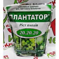 ПЛАНТАТОР Зростання плодів 20.20.20 упаковка 1кг