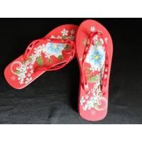 Жіноче взуття (шльопанці, босоніжки, в'єтнамки, чоботи)