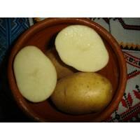 Картопля органічна купити недорого