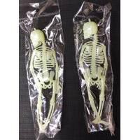 Скелет фосфорный