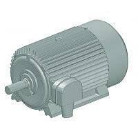Асинхронний електродвигун з короткозамкненим контуром АО-5000/2500-750/600У1
