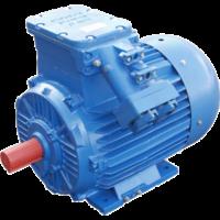 NEP Двигун ВЗР 4 кВт, 1000 про / мін