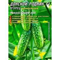 Семена огурцов пчелоопыляемых Донской родник F1 25 шт. Инк.