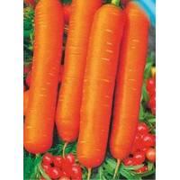 Семена моркови Калина F1