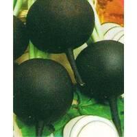 Семена редьки Черная зимняя (Укр)