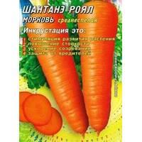 Семена моркови Шантане Роял (США) 2000 шт. Инк.