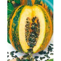 Семена тыквы Южная голосеменная