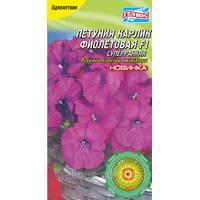 Петуния Карлик суперранняя Фиолетовая 10 драже