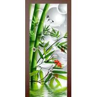 3D двери Бамбук 9262, 70х200 см