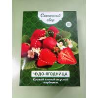 Чудо-ягодница Сказочный сбор - набор для выращивания клубники на подоконнике
