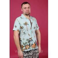 Brand, Рубашка муж с коротким рукавом