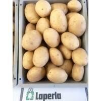 Картопля  Лаперла за 6 кг (ІКР-160-6)