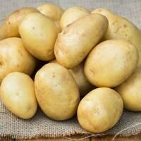 Картопля Рів'єра  за 6 кг (ІКР-16-6)
