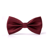 STK Галстук-бабочка бордовый