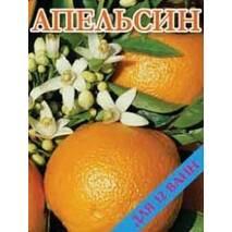 Концентрат для ванн Апельсин 500 гр