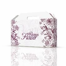 Упаковка для одежды 370х80х210 мм, Piones Flower
