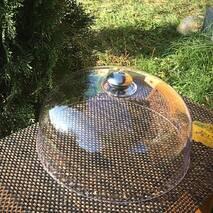 Крышка-купол пластиковая для тортовницы HLS 26 см (W0184/1)