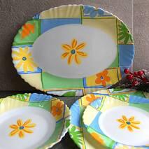 Столовий сервіз з блюдом Arcopal Valensole19 предметів (N8499)